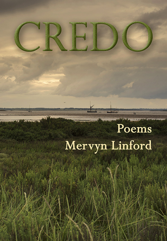image of Credo book cover with saltmarsh river bank and moody sky