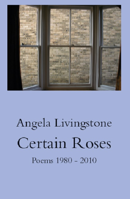 picture of Certain Roses book cover with blank wall seen through a window