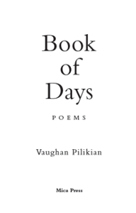 image of Book of Days book cover, which is only words, no pictures